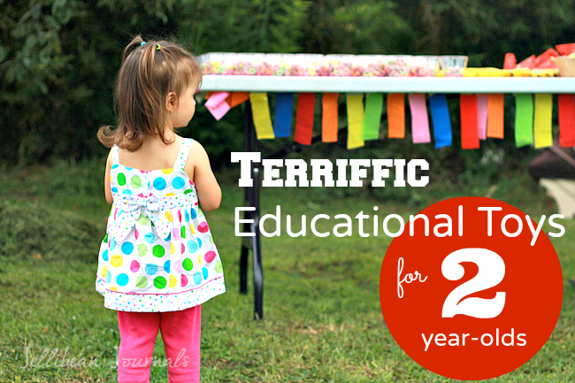 Terrific Educational Toys for a Two Year Old - Jellibean ...